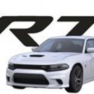 2015 Bright White Charger sig.jpg